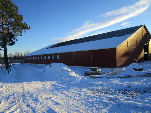 Sorknes gård, Kirkenær